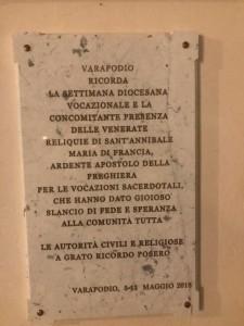 Varapodio SVD 01